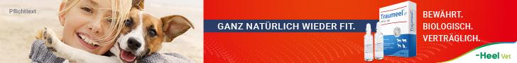 Biologische Tierarzneimittel bei akuten Muskelbeschwerden